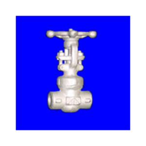 Globe Valve API602 | Shoritsu Valve supplier Malaysia | Turcomp