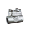 Check Valve API 602 | Shoritsu valve supplier Malaysia - Turcomp